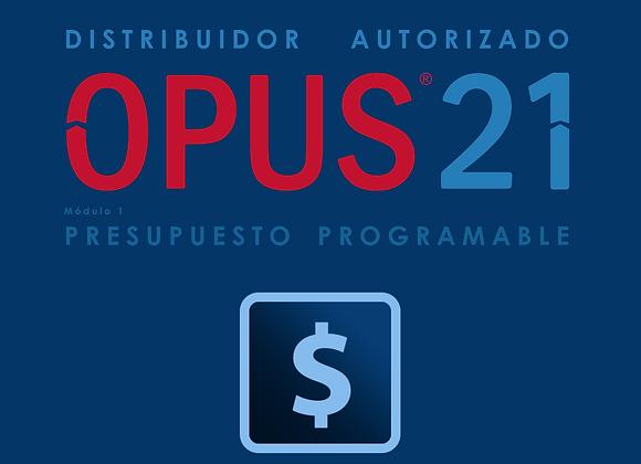 Módulo I Presupuesto Programable OPUS21 (IVA no incluido)