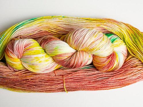 Multicolor-2537