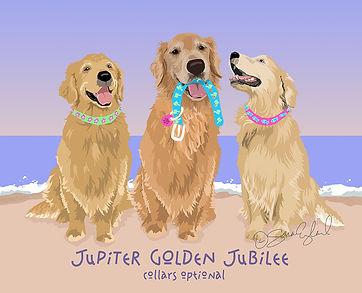 jupiter collars2.jpg