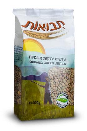 Green Lentils Tvuot