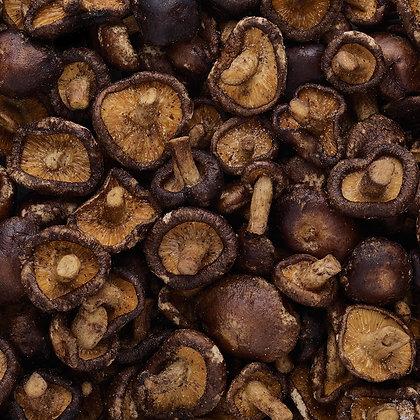 Mushrooms Shiitake