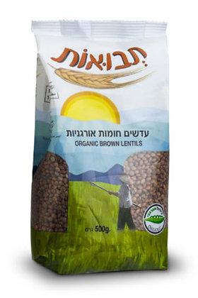 Brown Lentils Tvuot