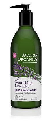 Avalon Lavender H&B Lotion