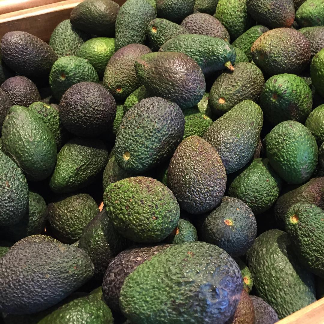 avocado 1oo reasons to love tel aviv