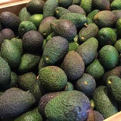 avocado 1oo reasons to love tel aviv