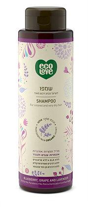 Shampoo for Color Treated & Dry Damaged Hair Ecolove