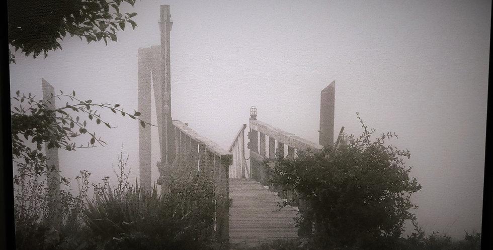 Morning Fog on the Harbor