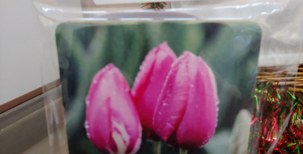 Pink Tulips in the Rain, Set of 4 Coasters