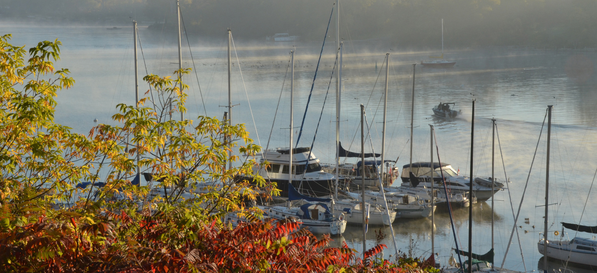 Misty Picton Harbour Photo Credit: © Peggy de Witt