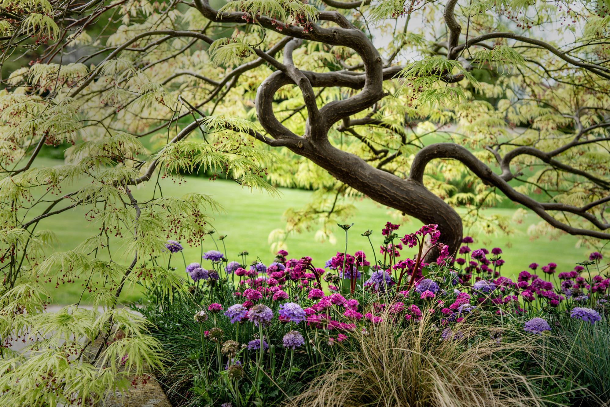 Für Sie und Ihren Garten