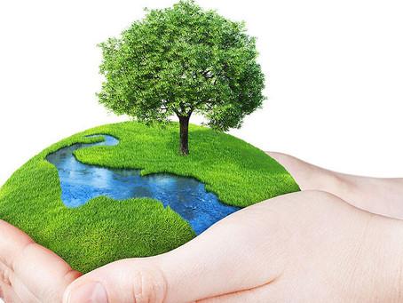 Coronakrise kan inspirere til miljørigtig livsstil