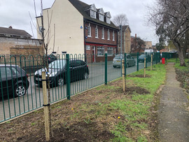 Community Fruit Tree planting 16.3.19