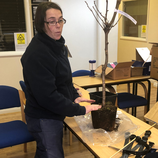 IMG_3878.JPGCommunity Fruit Tree planting 16.3.19