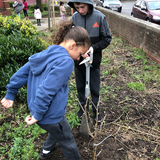 IMG_3892.JPGvCommunity Fruit Tree planting 16.3.19
