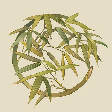 bamboo_000.png