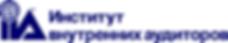 лого ИВА.png