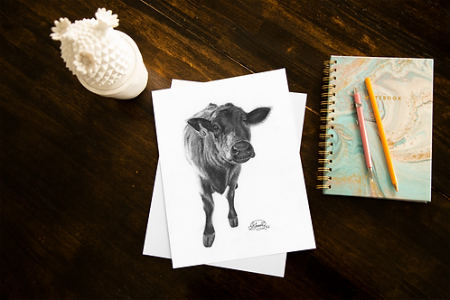 Curious Calf - ORIGINAL