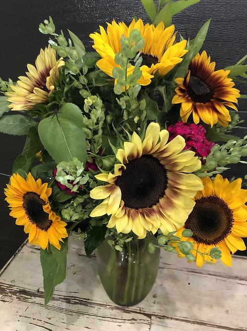 Sunflower Delight!