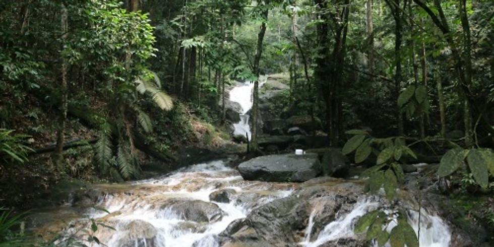 Sungai Tekala Waterfall Camping Adventure