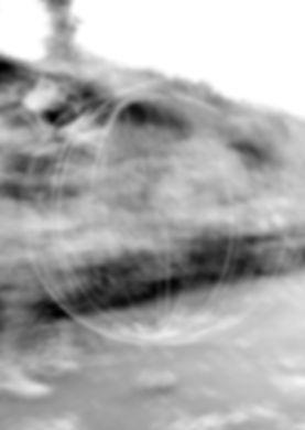 PHOTO TEMPS CYCLE.jpg