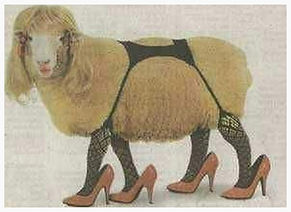 Sheep prositute in high heels and nylons