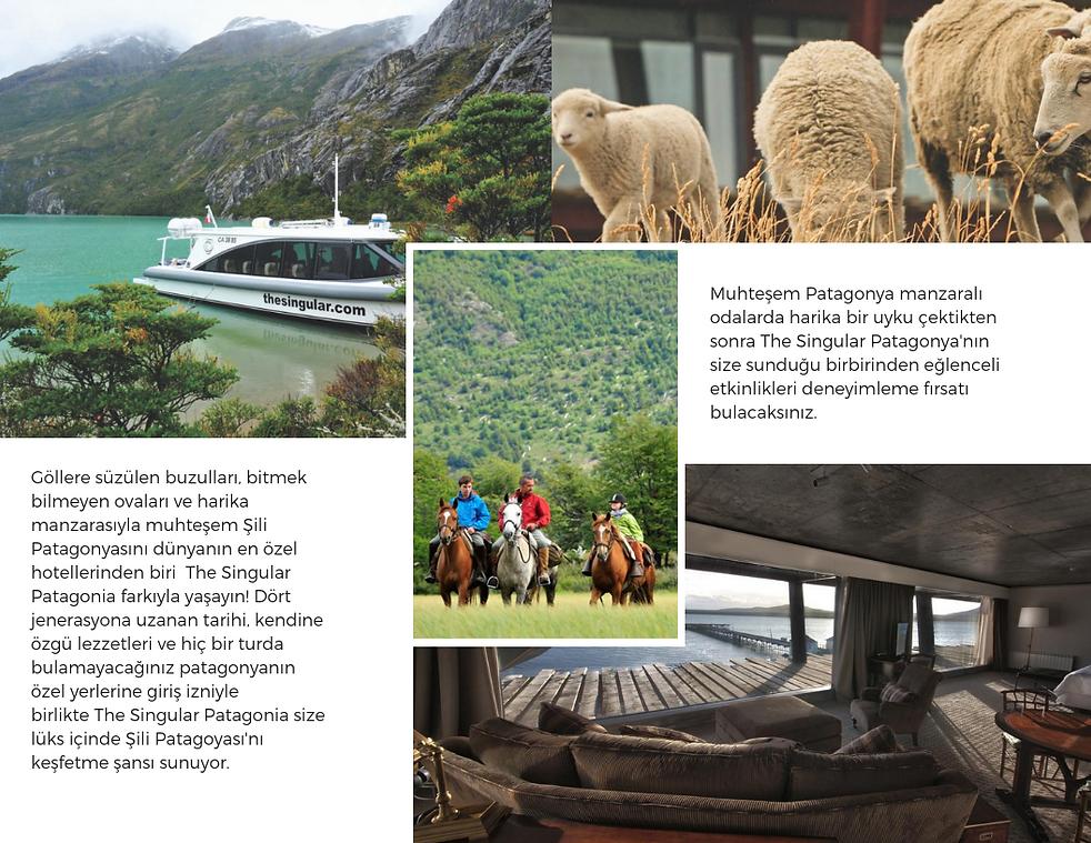Photo of Falls Travel Brochure (5).png