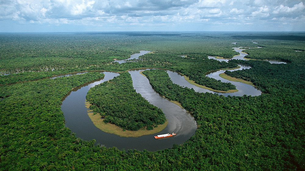 Brezilya Amazonu