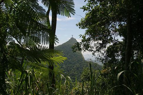 floresta-da-tijuca-e-cristo-christ-and-t