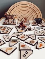 Animal Fact Puzzles.jpg