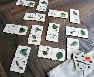Memory Game Trees.jpeg