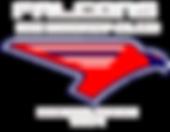Falcons Ice Hockey Club SA