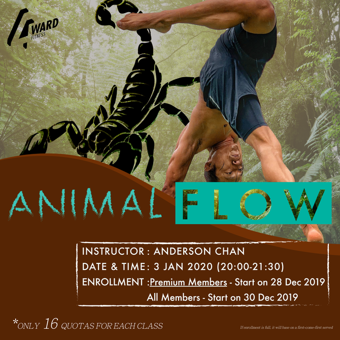 【會員專區✨Animal flow workshop】