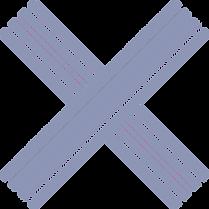 logo%20X_edited.png