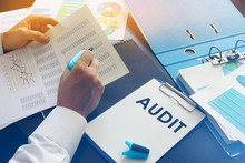 To Audit or Not to Audit...