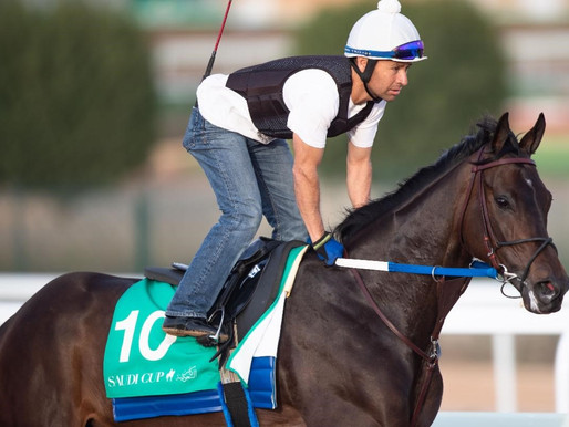 After canceling sale, Bloom Racing gives Midnight Bisou chance to see how high she can go