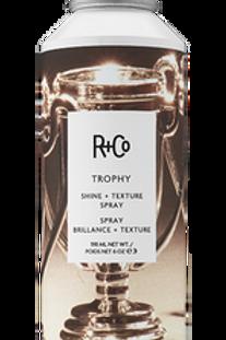 Trophy Texture Spray