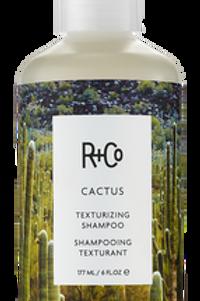 Catcus Texturing Shampoo