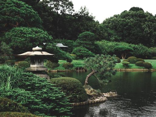 08 Ideias para se Inspirar nos Jardins Japoneses