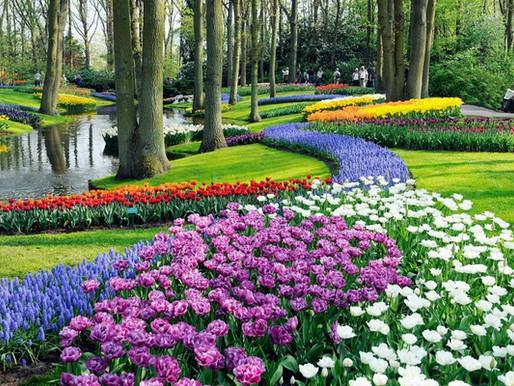 Parque Keukenhof - Jardins pelo Mundo
