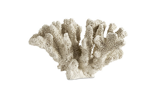 Belize Coral Sculpture