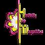 Logo hdm.png