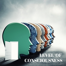 LEVEL OF CONSCIOUSNESS - WIX Store.png