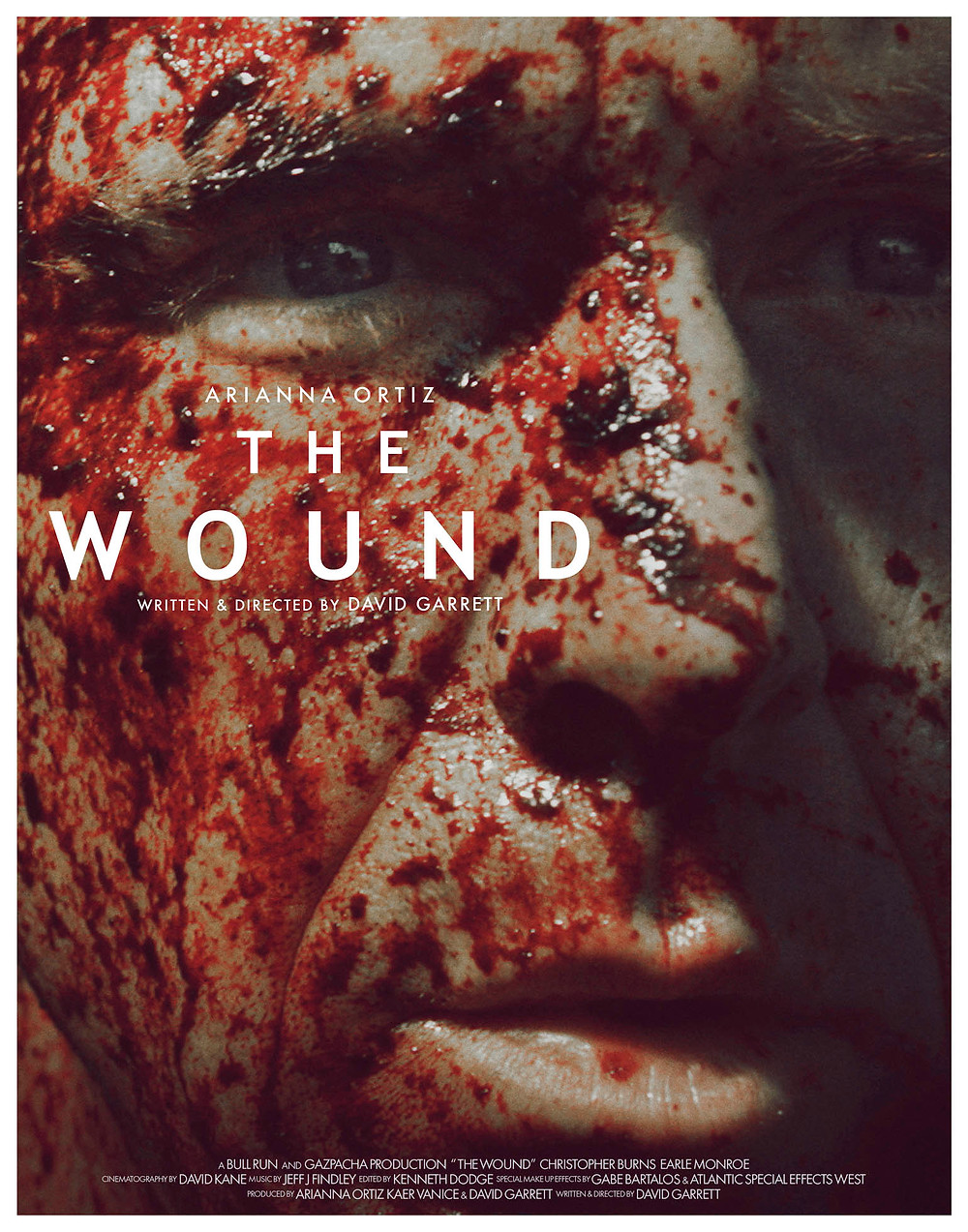 Poster_22X28_The Wound.jpg