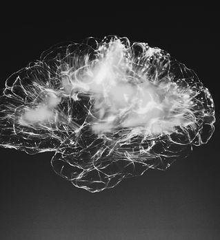 Brain-General.jpg