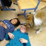 F8_Tiergestützte_Pädagogik_2014.jpg