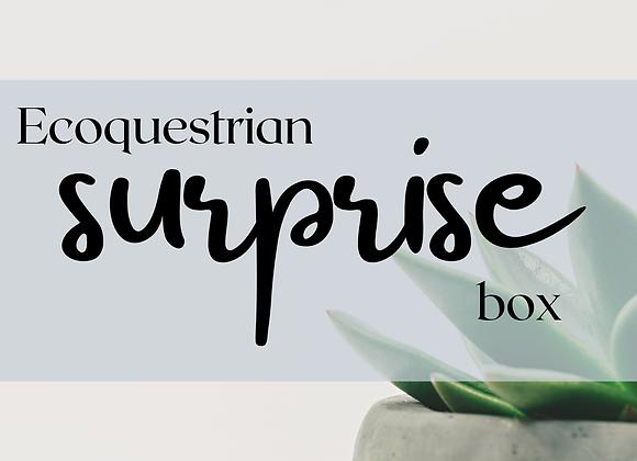 Ecoquestrian Mystery Surprise Box