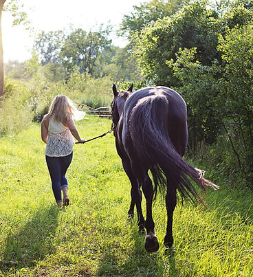 woman-with-horse-2631173_1920_edited.jpg