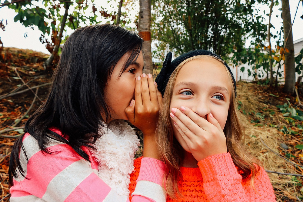 Two girls whispering to each other. 3 Types of People You Need in Your Dream Support System [and Why You Shouldn't Tell Everyone Your Ideas]. Destiny Yarbro blog - serial-entrepreneur, author, speaker, and online business consultant.
