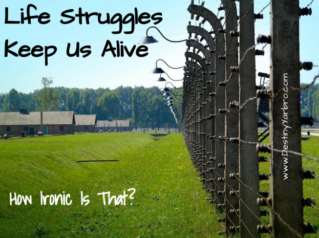 Life Struggles Keep Us Alive (How Ironic is that?). Print is set on a photo of Auschwitz's fence and green grass. Destiny Yarbro blog.