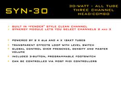 Synergy Syn-30